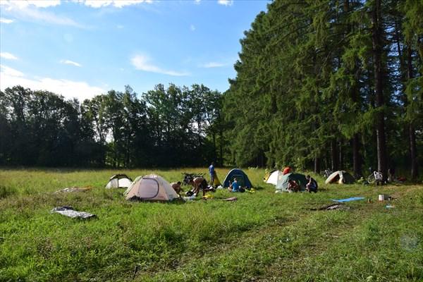 Наш лагерь на поляне