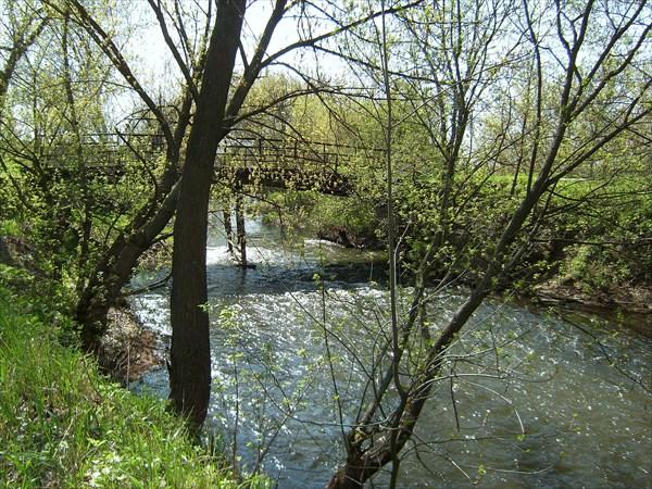 Помещичий парк в Юрьевке.