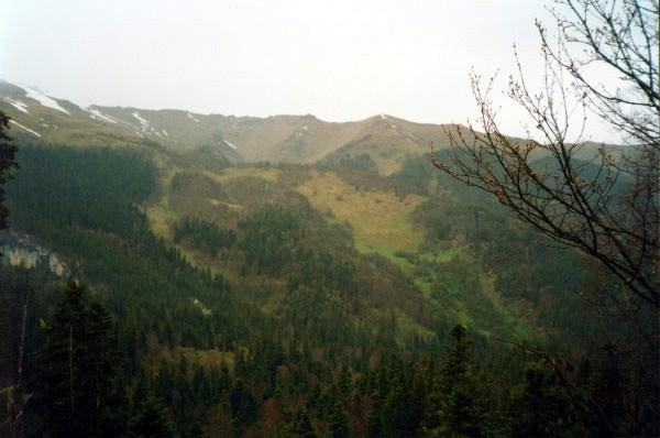 paisage