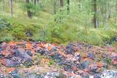 Оранжевый цвет камней во многих местах.