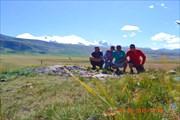 На плато Укок