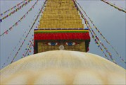 У Будды под присмотром