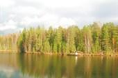 Природа на нейтральной территории