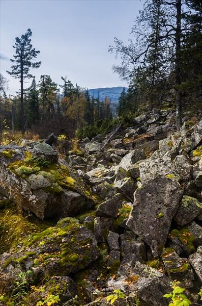 Камни посреди леса