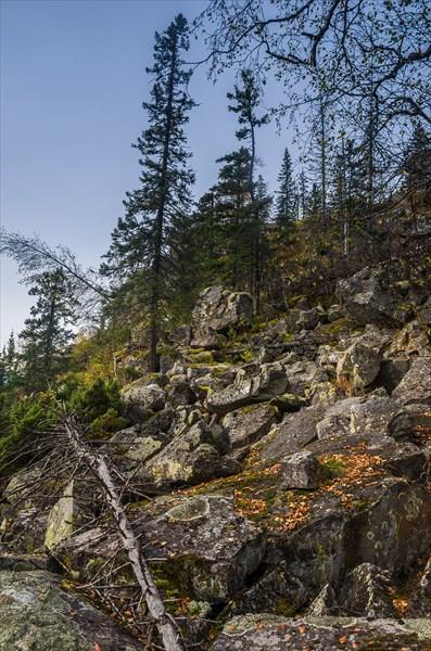 Камни посреди леса-2