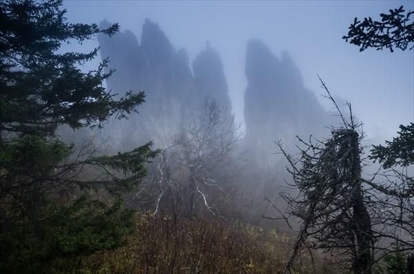 Туманные силуэты