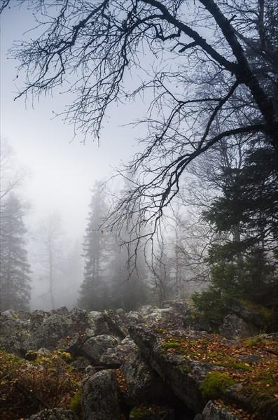 Мгла и туман 6
