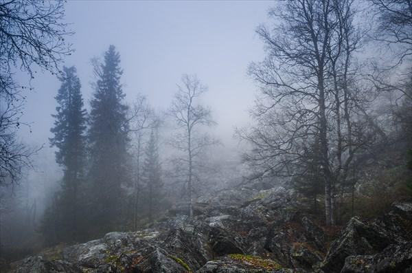 Мгла и туман 8