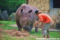 Зоопарк в Санто-Доминго, Доминикана