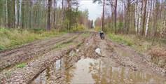 Участки грязи