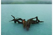 Утренние образы Кучерлинского озера