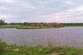 Остров в Березовке.