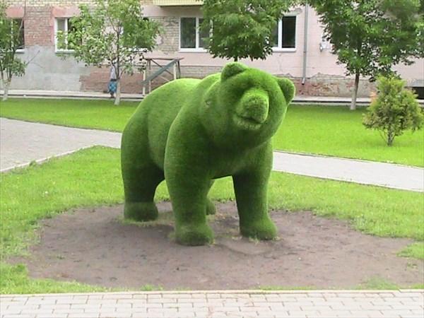 на фото: Медведь в городе.