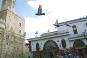 Голуби у мечети Оймеядов в Дамаске