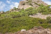 Вид на перевал