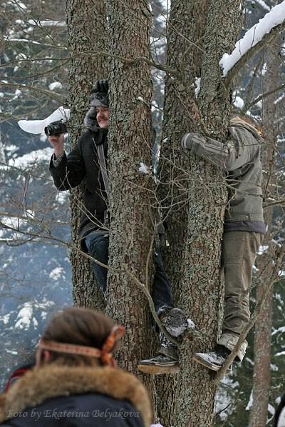 там чудеса, там люди бродят, фотограф на ветвях висит