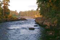 Река Охта. Хорошее лето