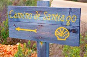 WP-Camino-sign-1024x700@2x