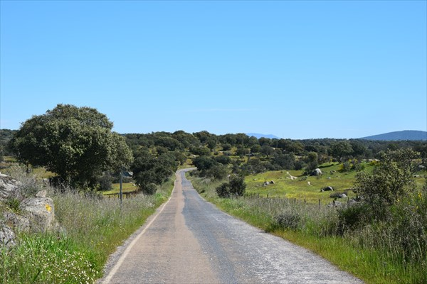 Дорога с водохранилища