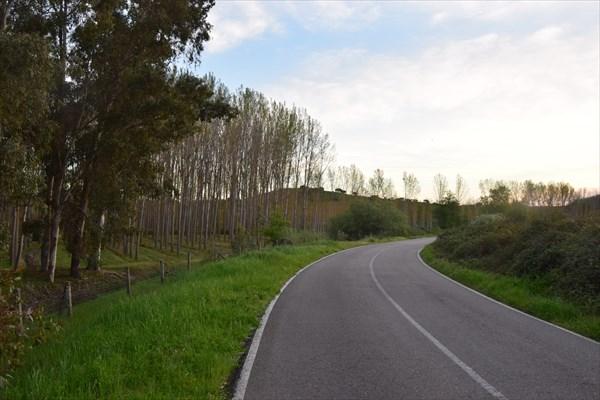 Тихая дорога