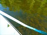 Вода в Сосьве