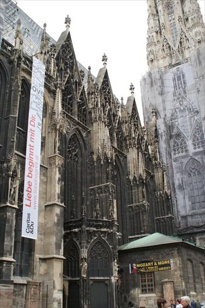 Кафедральный собор (Вена)