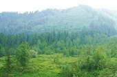 В долине р. Орзагай