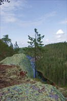 камень, дерево и вода