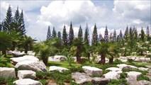 Сад Миллион летних камней