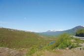Первые виды в Норвегии