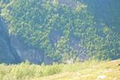 Вид на мост через каньон с плато