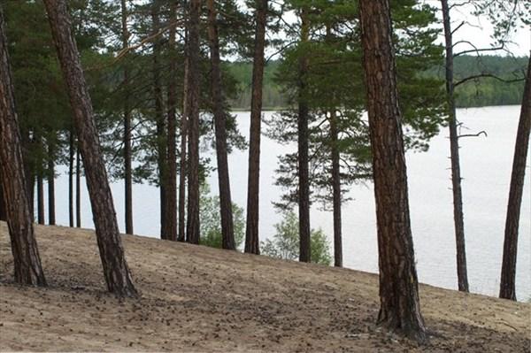 Берег озера Баканы