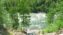 Река Светлая
