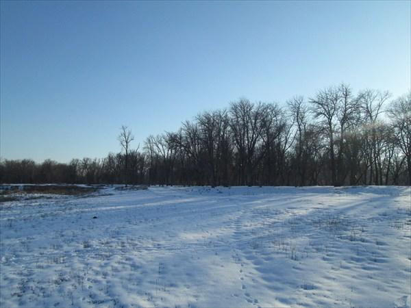 Вид на Колхозный сад с поля.