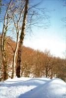 Зимнее утро на Воронцовских пещерах