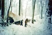 Снежная зима на Воронцовке