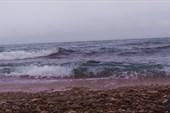 Угрюмая волна