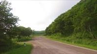 Дорога в Тимофеевку