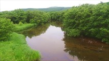 Река Тимофеевка