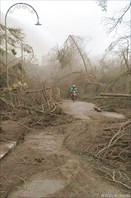 После извержения вулкана Бромо