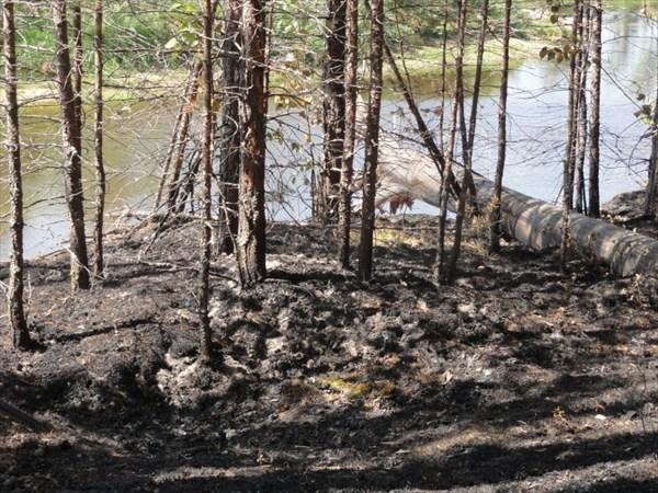 Здесь недавно был пожар.