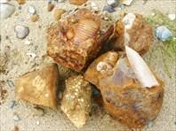 Каменные фотографии