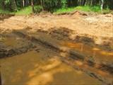 Лесовозная дорога после дождей