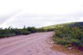 Дорога на Дальние Зеленцы