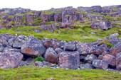 Каменные россыпи