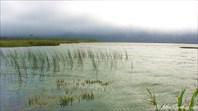 Озеро Славное