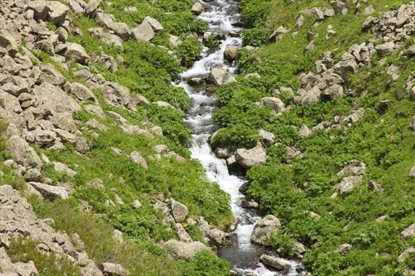 Приток Реки Арпа