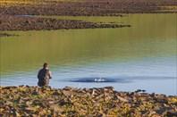 За озерной форелью