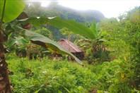 Филиппины 2012, Палаван