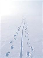 Ледяное безмолвие Байкала